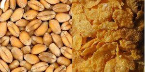 da cereale a cornflakes