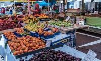 mercato contadino biologico