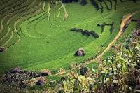 fertilità dei terreni