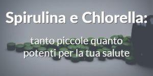 Spirulina e Chlorella: tanto piccole quanto potenti per la tua salute