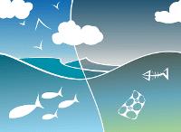 la plastica uccide il mare
