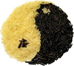 equilibrio yin e yang nell'alimentazione