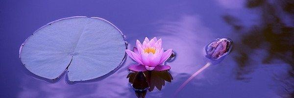 Meditazione e mindfulness: sono la stessa cosa?