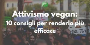 Attivismo vegan: 10 consigli per renderlo più efficace